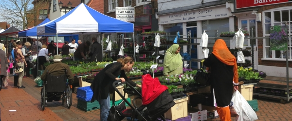 The Plant Stall on the Wednesday Market