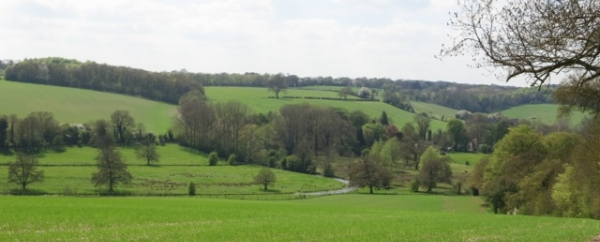 Chess Valley View