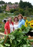 Allotments Open Day